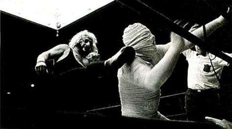 1972-titanes en el ring-revistaviva-2012