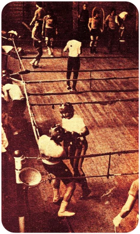 1978-gim II